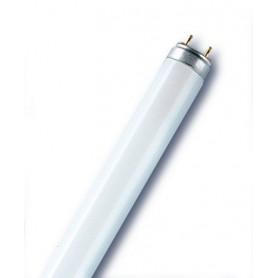 ΛΑΜΠΤΗΡΑΣ CFL TUBES (ΦΘΟΡΙΣΜΟΥ) FLUORA® T8 18 W/77