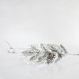 ΚΛΑΔΙ ΧΙΟΝΙΣΜΕΝΟ ΜΕ ΚΟΥΚΟΥΝΑΡΙ, 80cm