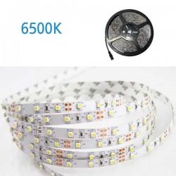 ΤΑΙΝΙΑ LED 5 ΜΕΤΡΩΝ 4,8W 12V 6500K IP20 VALUE
