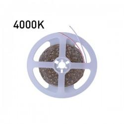 ΤΑΙΝΙΑ LED 5 ΜΕΤΡΩΝ 10W 24V 4000K IP68 PRO